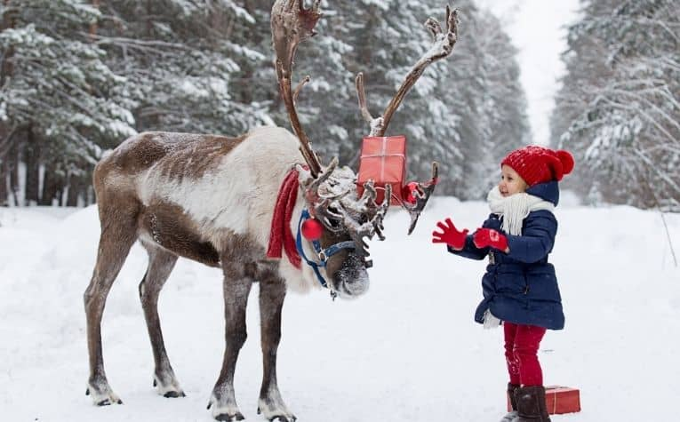 A girl and a reindeer in Norway