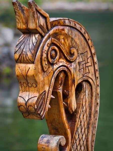 Vikings dragons