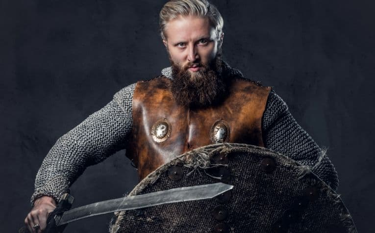 Viking raider in chain mail