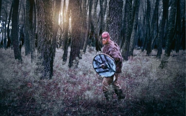 Viking hunting in the forrest